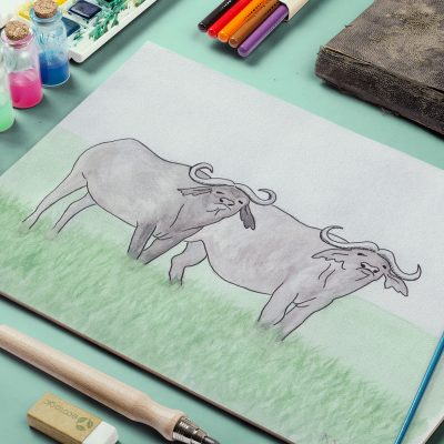 """Water Buffalo,"" Watercolor , 2014"