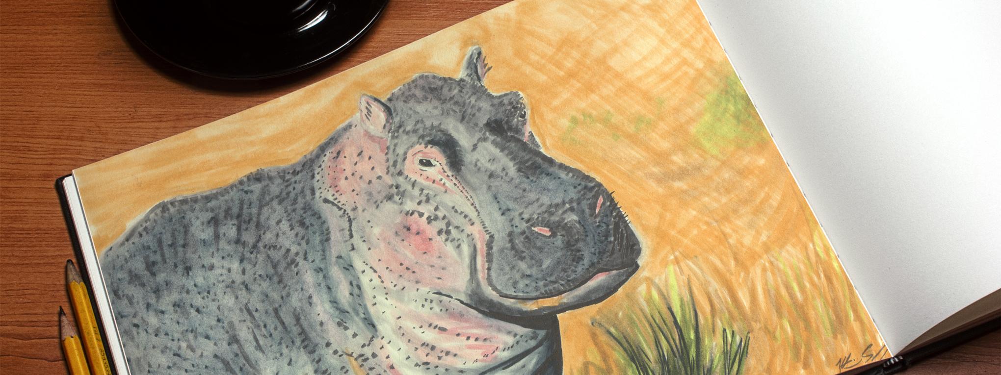 Hippo, 2014
