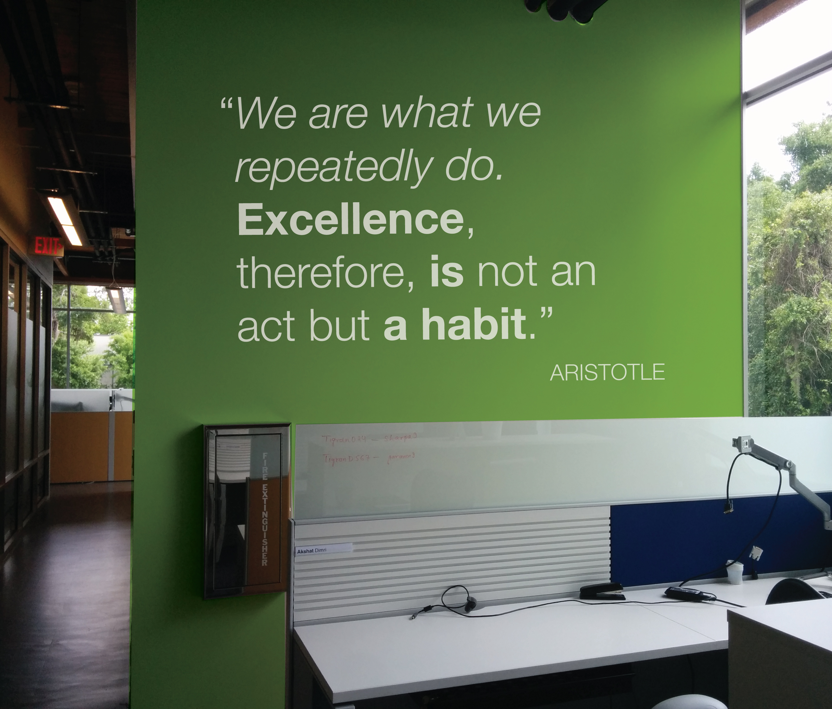 Office Mural, Aristotle Quote, 2015