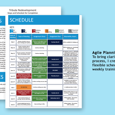 Agile Planning for the Redesign