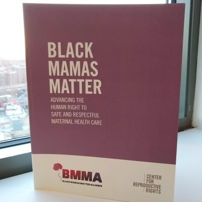 Photo of the Black Mamas Matter Alliance toolkit cover.